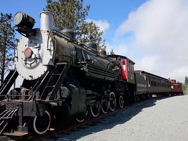 ガリバルディで見た蒸気機関車-1
