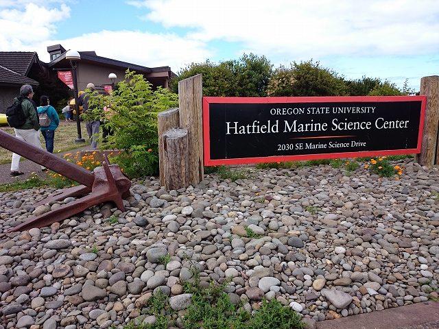 オレゴン大学ハットフィールド海洋技術センター-10-44-02