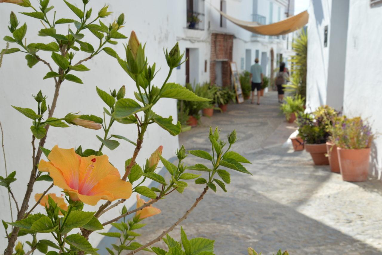スペインの白い街フリヒリアナ